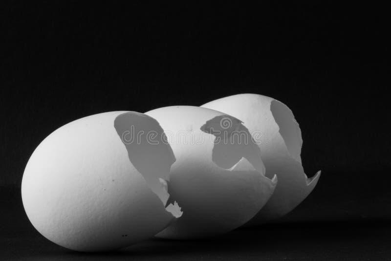 spruckna ägg arkivfoto