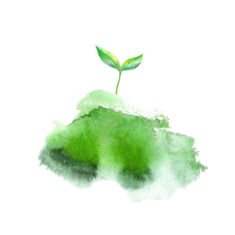 spruit in het gras De lentebeeld Waterverfhand getrokken illustratie royalty-vrije illustratie