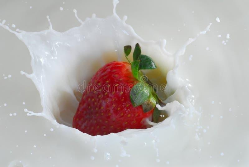 Spruzzata del latte immagini stock libere da diritti