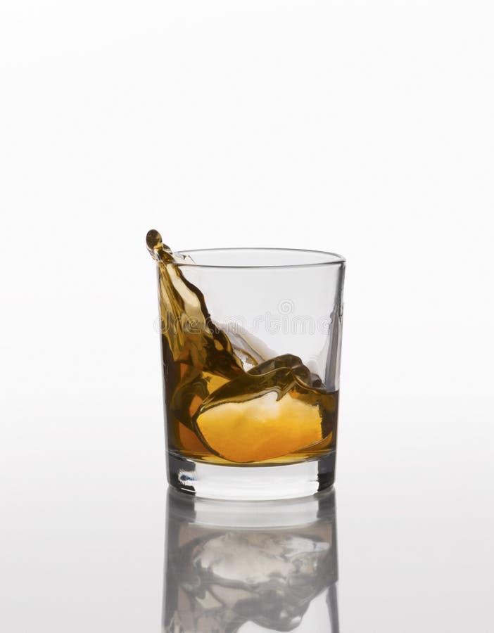 Spruzzata del whiskey su vetro elegante isolato su fondo bianco immagini stock libere da diritti