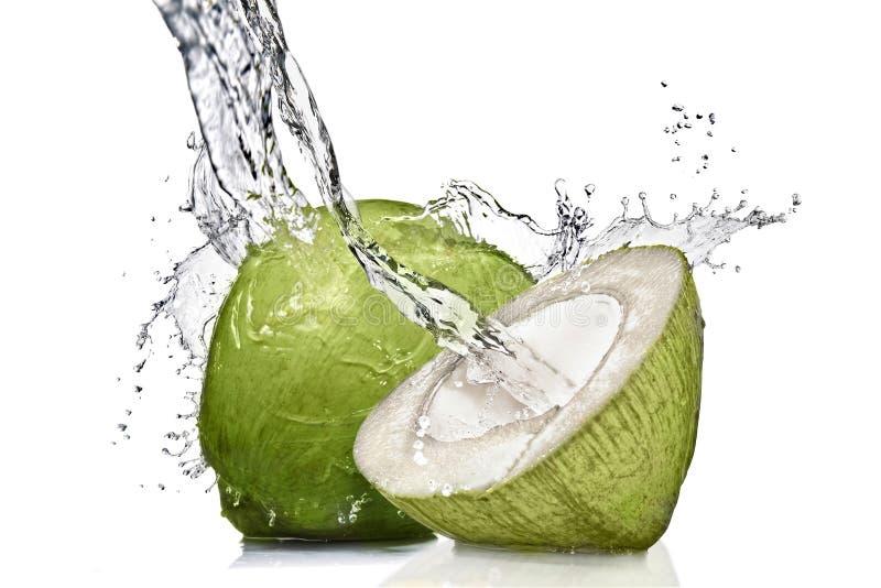 Spruzzata di acqua sulla noce di cocco verde fotografie stock