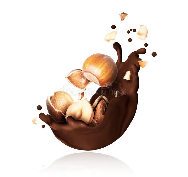 Spruzzata di cioccolato fuso con il primo piano schiacciato delle nocciole su fondo bianco fotografia stock libera da diritti