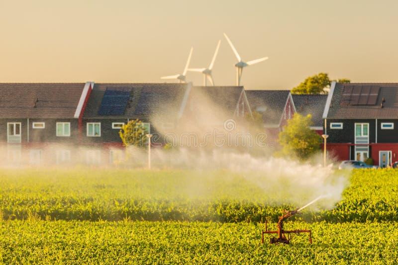 Spruzzatore di irrigazione su terreno coltivabile davanti alle case olandesi fotografia stock libera da diritti