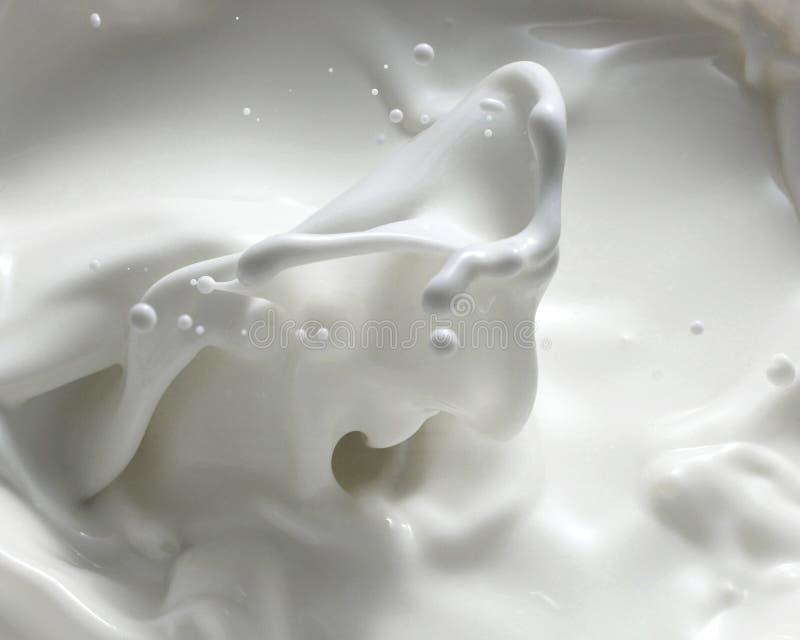 Spruzzatura Del Latte Fotografia Stock