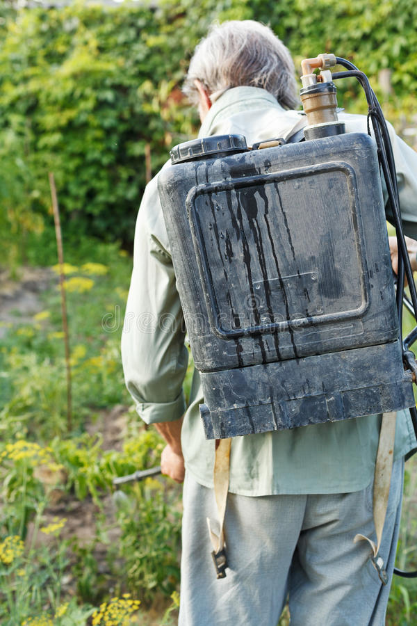 Spruzzatura del lavoratore dell'antiparassitario sul giardino del paese fotografie stock