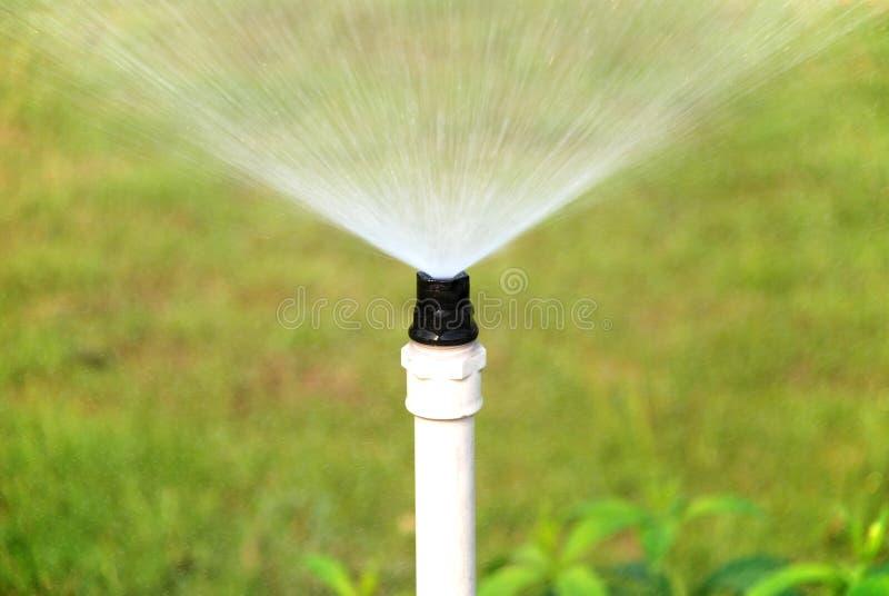 Spruzzatura dell'acqua fotografia stock