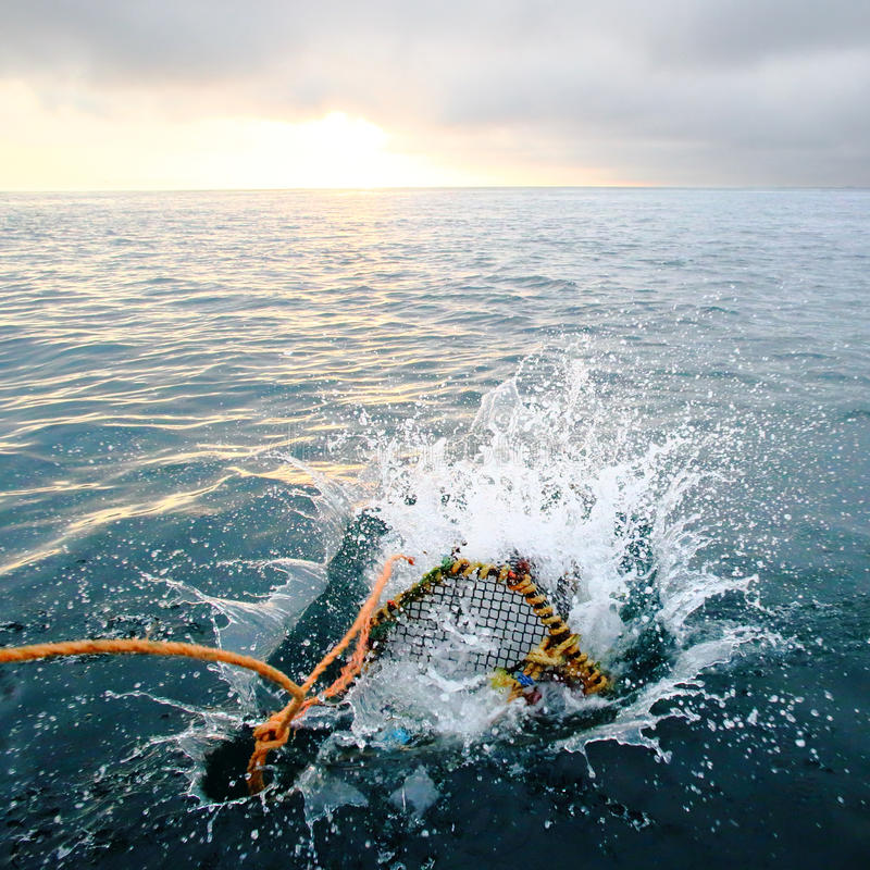 Spruzzatura della rastrelliera nel mare all'alba fotografia stock libera da diritti