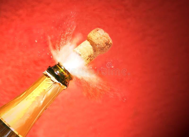 Spruzzo 2 di Champagne fotografia stock