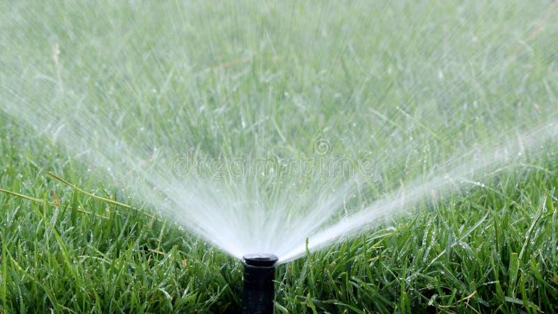 Spruzzo automatico di irrigazione del giardino immagini stock