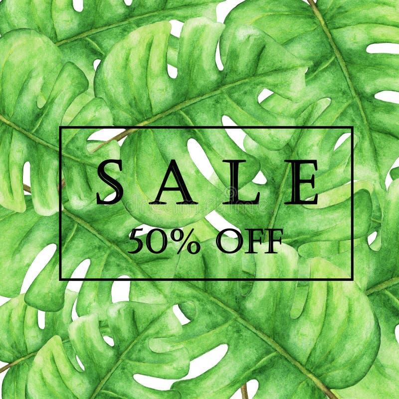 Sprzedaż sztandar, plakat z zielonym monstera opuszcza, dżungla liść ilustracji