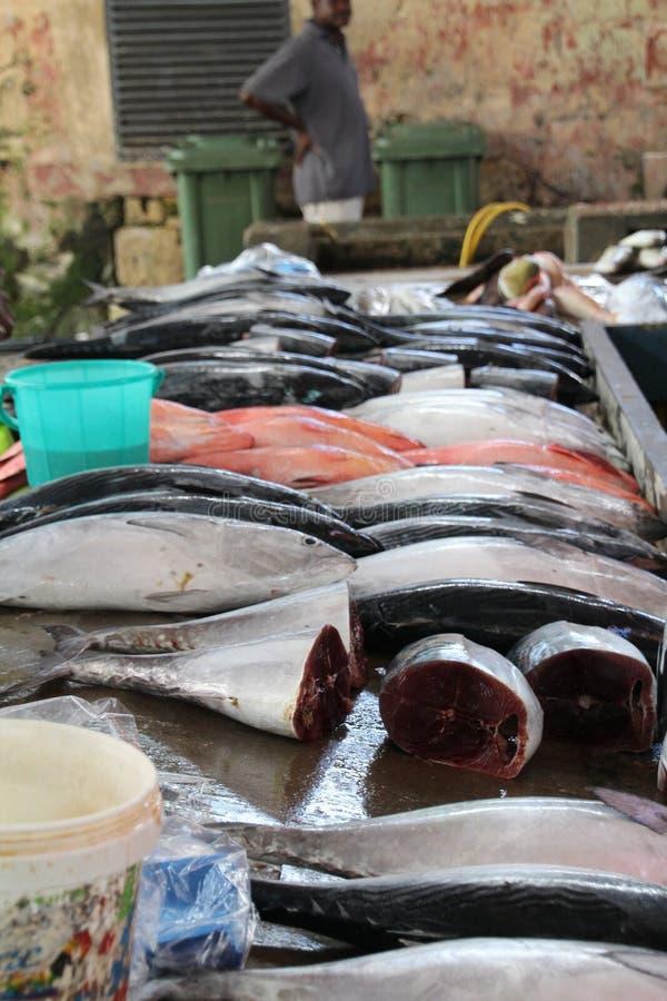 sprzedaży ryb obraz stock