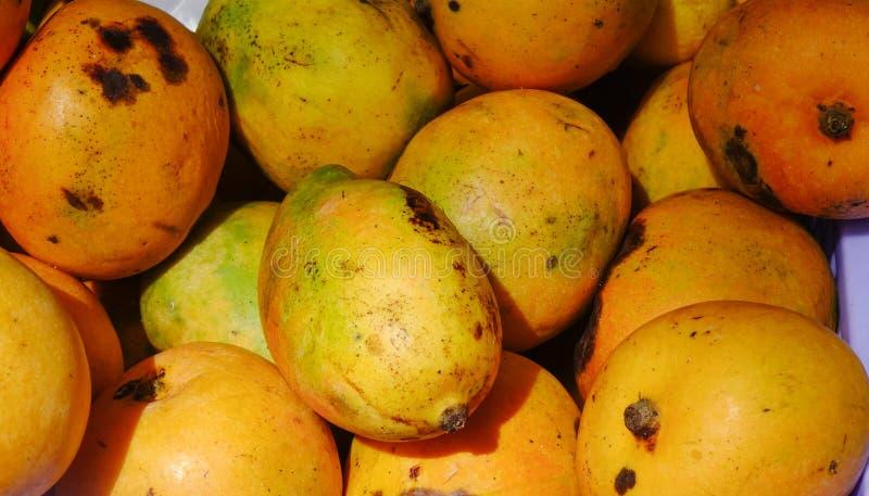 Sprzedawanie mangowe owoc przy wiejskim rynkiem fotografia royalty free
