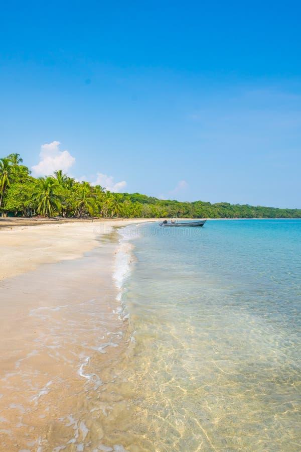 Spuma stupefacente della spiaggia di Costa Rica Ocean Water Beach Paradise di vacanza degli alberi della pioggia dell'acqua carai immagini stock libere da diritti