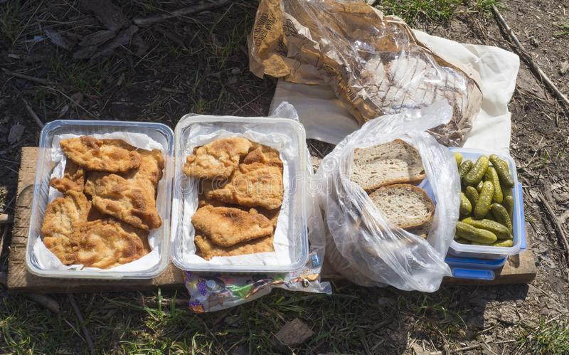 Spuntino in erba, scatola con le fette del pane della bistecca della carne di maiale fritte cotoletta alla milanese e sottaceti i immagine stock libera da diritti