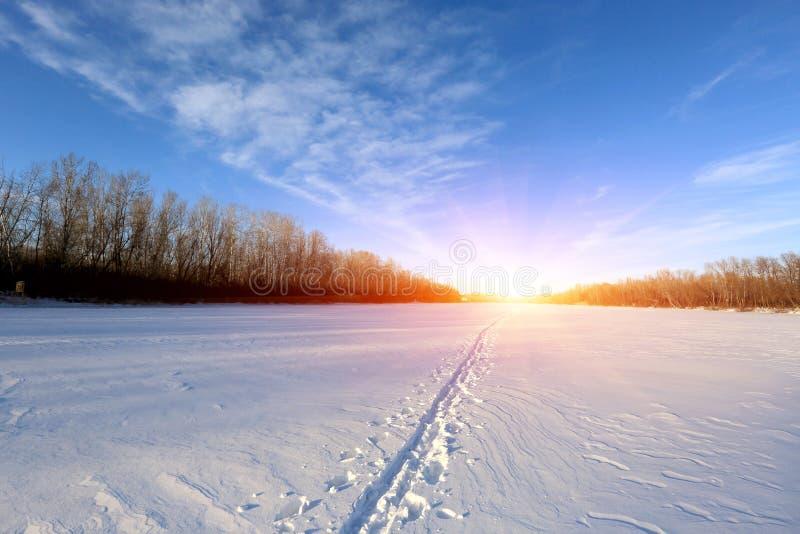 Spur auf Schnee stockfotografie