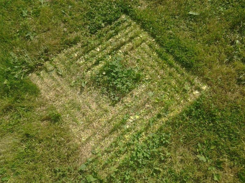 Spur im Gras stockfoto
