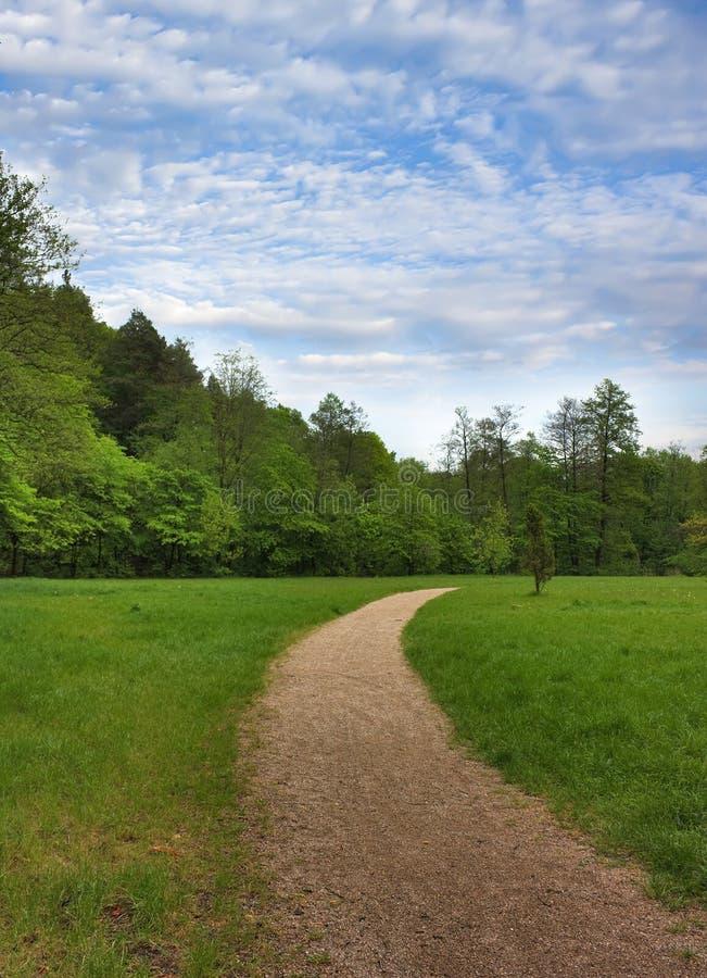 Spur im Park stockfotos