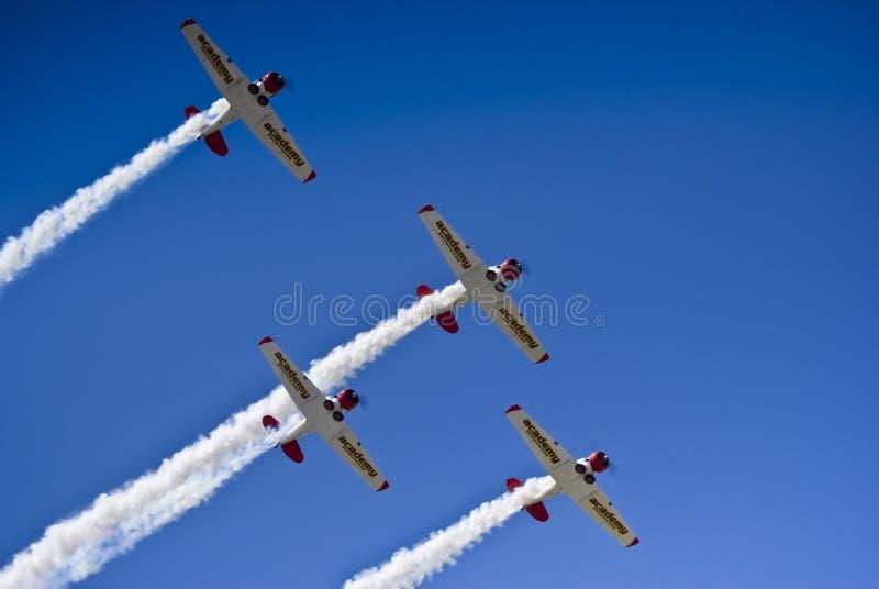 Squadra Aerobatic di Harvard dei leoni di volo di Castrol immagini stock libere da diritti