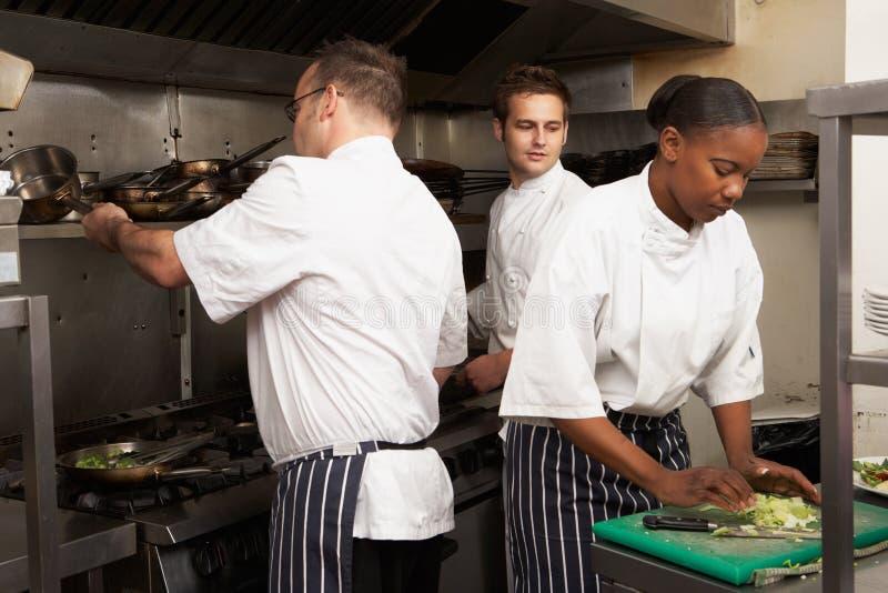 Squadra di cuochi unici che preparano alimento nella cucina del ristorante fotografia stock libera da diritti