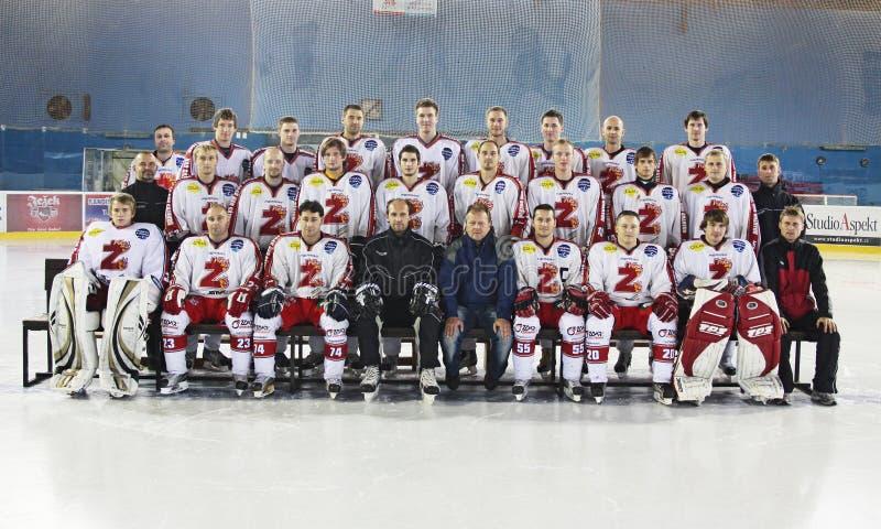 Squadra di hockey del ghiaccio immagini stock libere da diritti