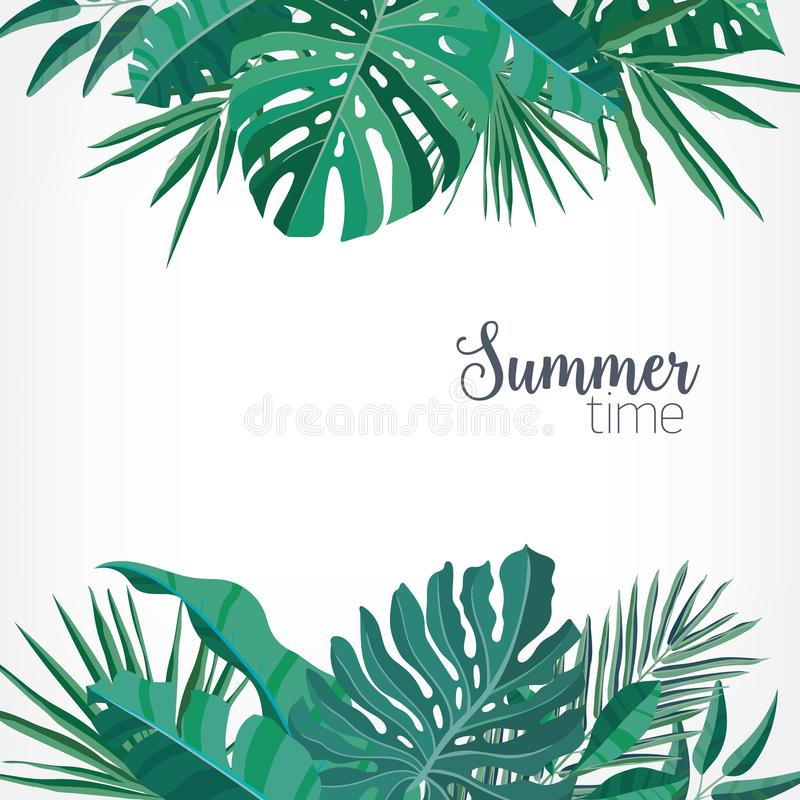 Square backdrop or background with green palm and monstera leaves or foliage of rainforest plants at top and bottom vector illustration