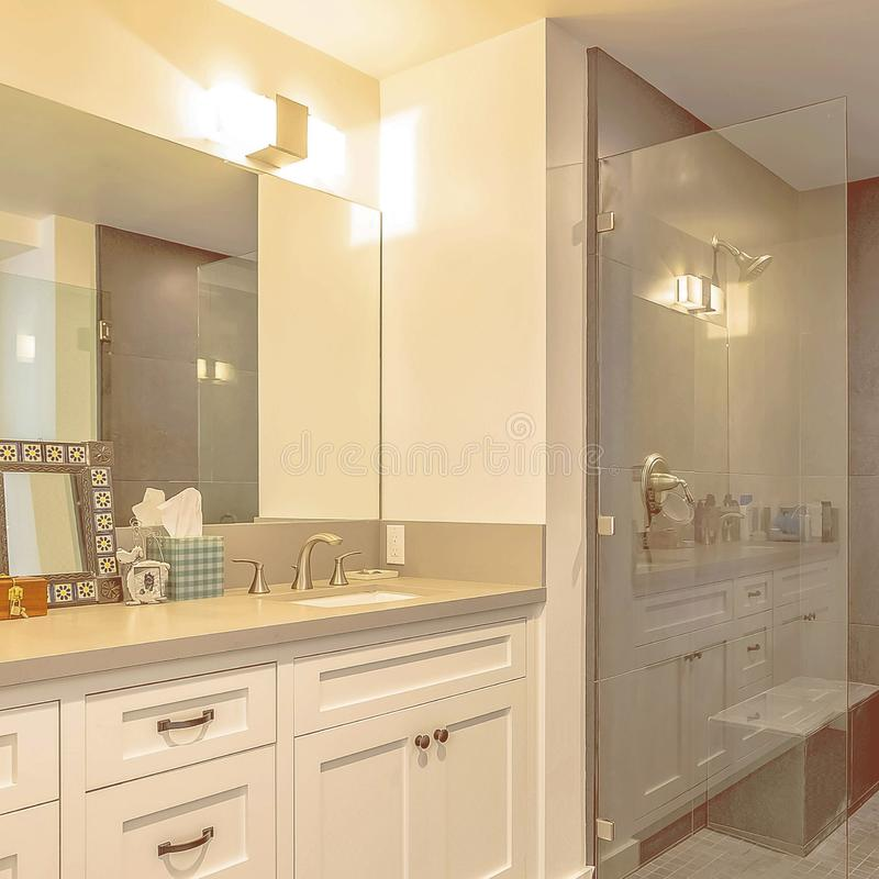 Square Bathroom interior with shower separated from the vanity area by a glass door. The vanity has wood cabinets, double sink, and large mirror royalty free stock photo