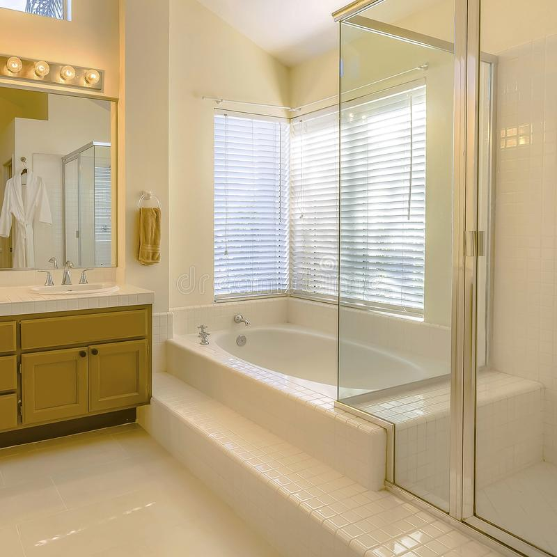 Square Built in bathtub and shower with glass door inside a beautiful bathroom. Vanity unit with double sink, large mirror, bright lights, and wood cabinets royalty free stock images