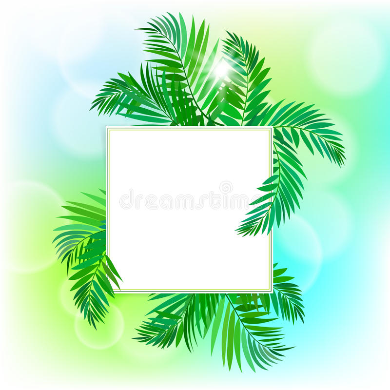 Download Square Card With Palm Leaves Stock Vector - Image: 40819647