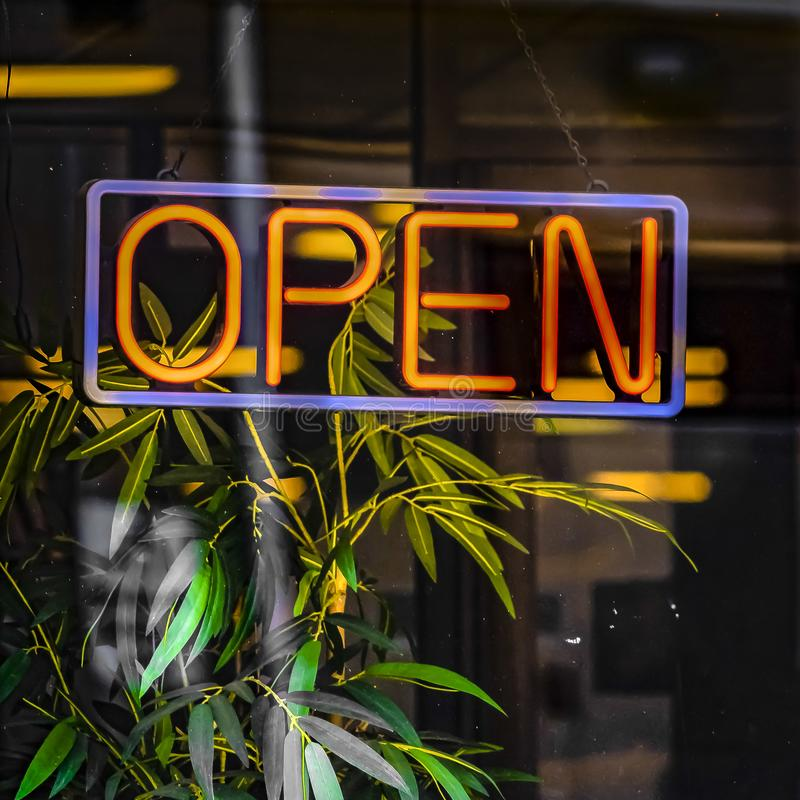 Square Close up of a neon open sign hanging on the glass wall of a commercial building. Indoor plant with dark green leaves can be seen through the transparent stock images
