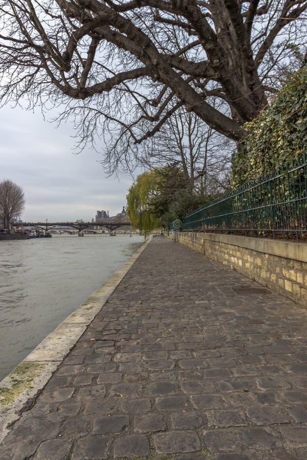 Square du Verde-Galant, Ile de la Cite, Parigi, Francia fotografia stock libera da diritti