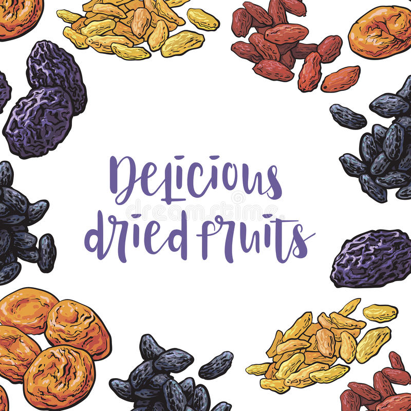 Square frame of dried fruits with round place for text. Inside, sketch vector illustration. Hand drawn realistic dried plums, prunes, apricots, raising as round vector illustration