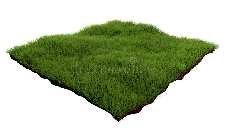 Square of green grass field on white background. Grass podium, lawn background 3d rendering.  royalty free illustration