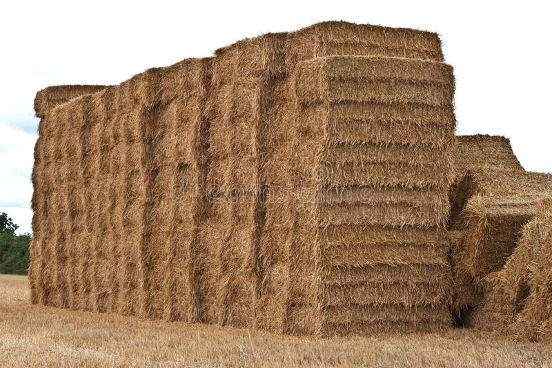 Square hay bales stacked up stock image