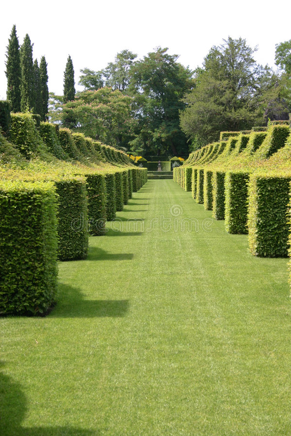 Square Hedges. Formal garden with box hedges royalty free stock images
