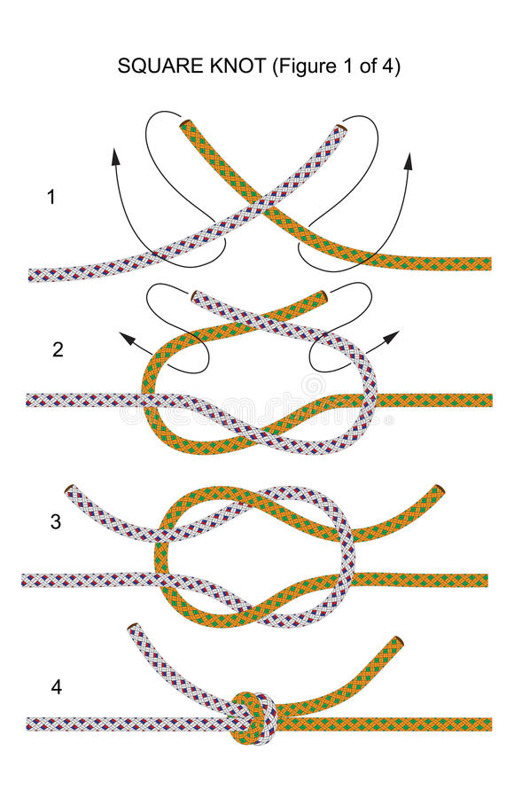 Free Square Knot (illustration 1 Of 4) Royalty Free Stock Images - 12337269