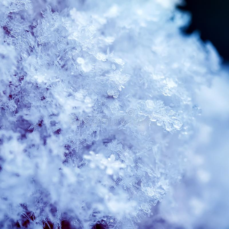Square natural background of many snowflakes of various shapes and texture shimmer on sun on a clear winter day stock photo