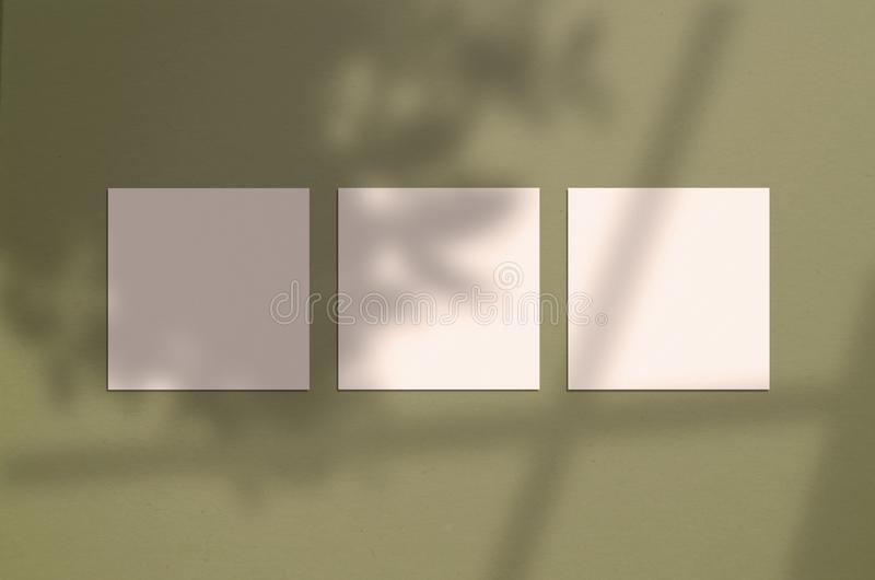 3 square posters on the wall with overlay shadow royalty free stock image