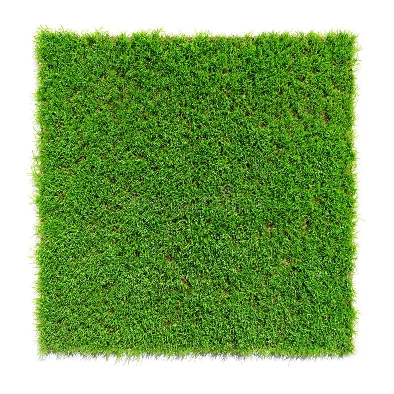 Square shaped green grass lawn, 3d render. Illustration stock illustration
