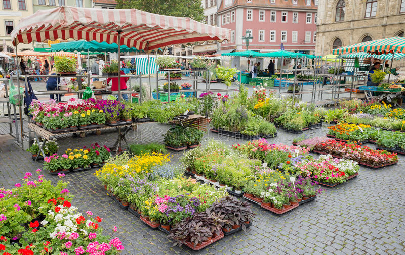 Square street market flower stall farmer production Weimar Germany stock images
