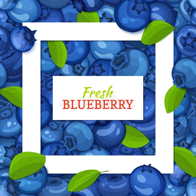 Square white frame and rectangle label on blueberry background. Vector card illustration. Blueberries fruit and leaves vector illustration