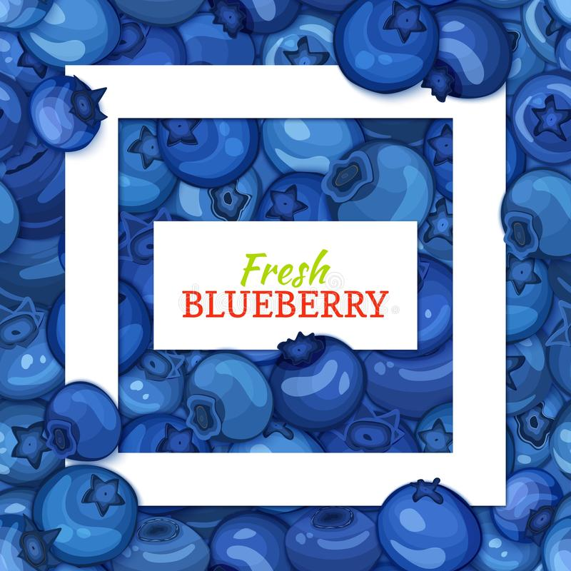 Square white frame and rectangle label on blueberry background. Vector card illustration. Blueberries fruit and leaves stock illustration