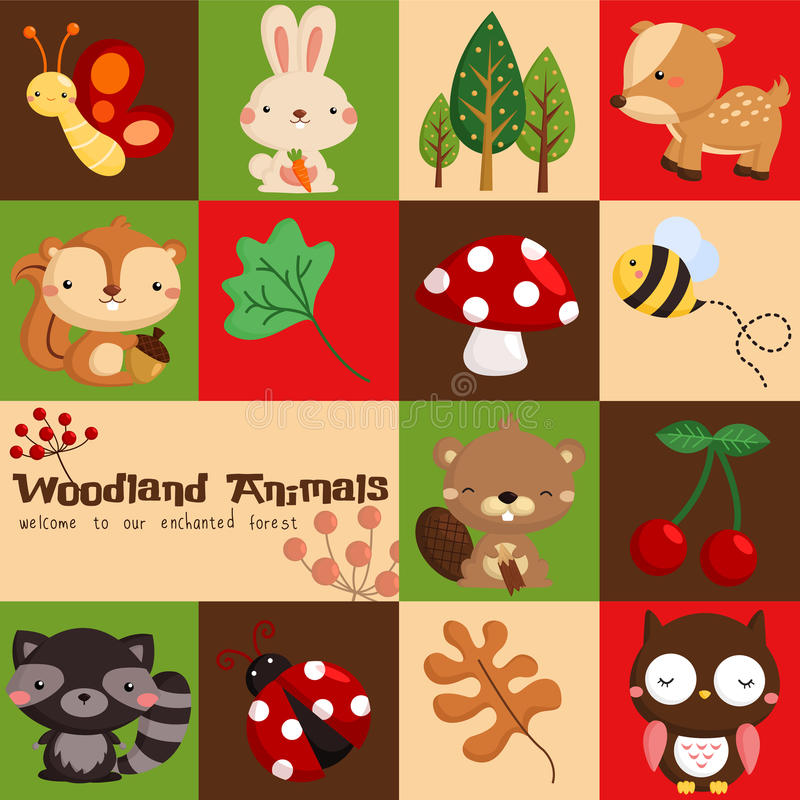 Square Woodland Animal royalty free illustration