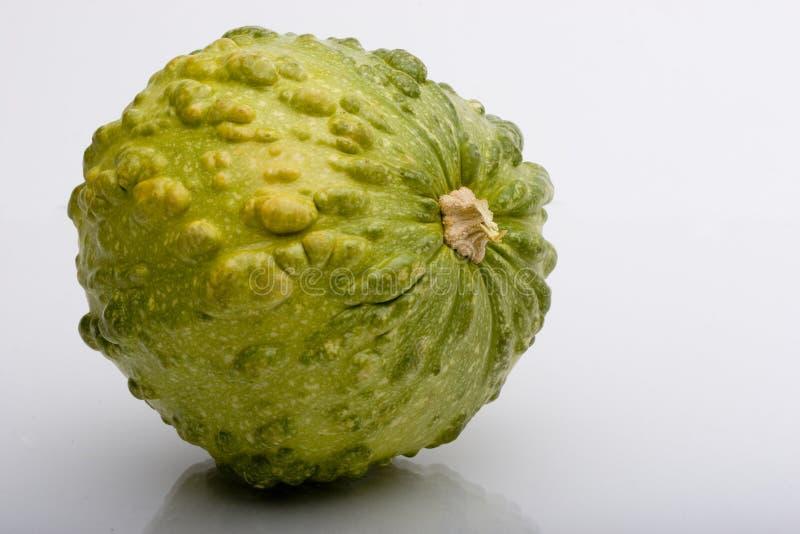 Download Squash stock photo. Image of squash, isolated, autumn - 1363180