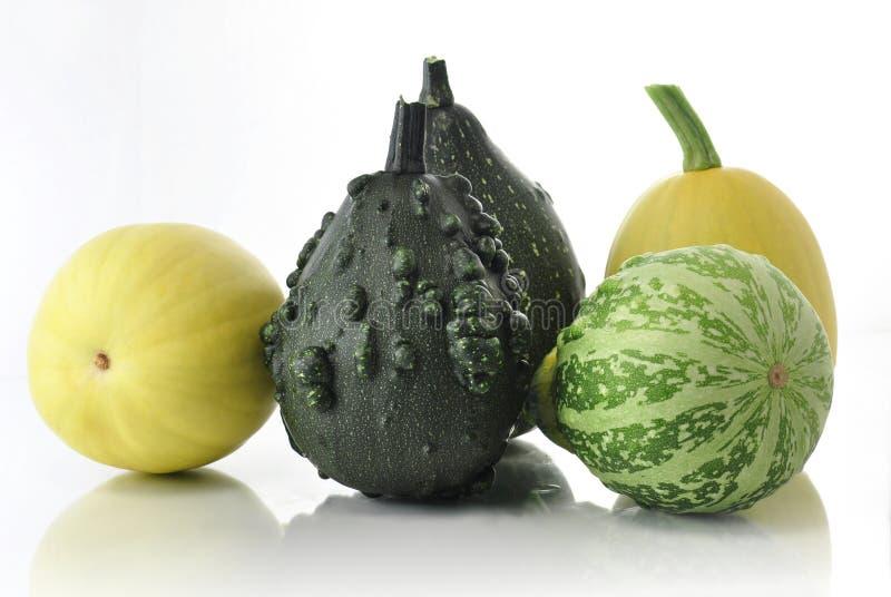 Download Squash stock photo. Image of pumpkin, decorative, variety - 15450546