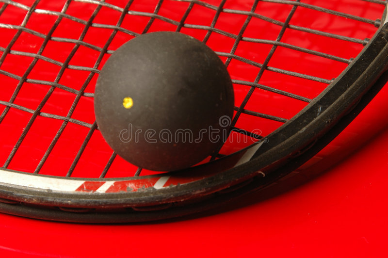 Squash royalty free stock photography