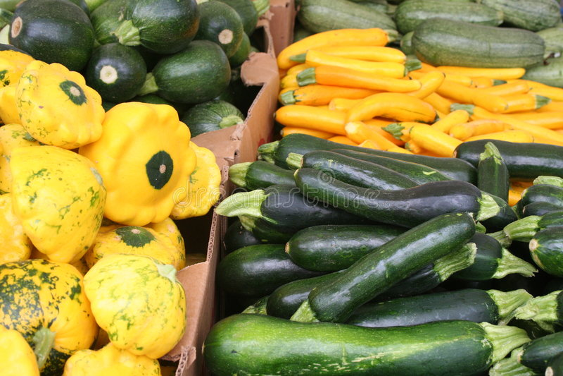 Download Squash stock image. Image of vegetarian, squash, dinner - 5741917