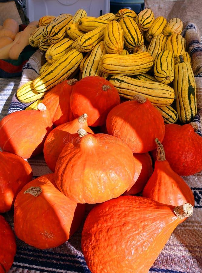 Squash at the Farmers Market royalty free stock photo