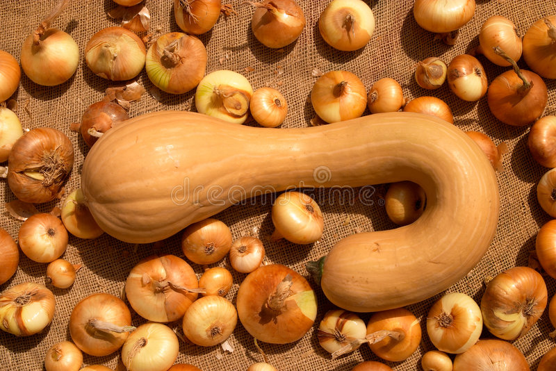 Download Squash And Onions Royalty Free Stock Images - Image: 306469