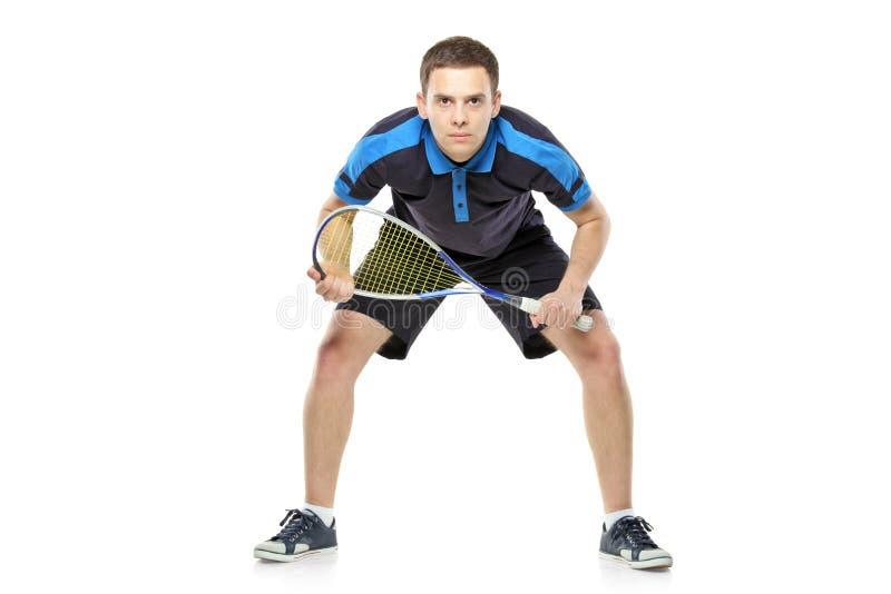 Download Squash Player Preparing For Service Stock Image - Image: 16846059