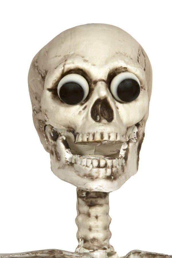 Squelette avec des yeux photographie stock
